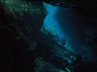 最も透明度の高い水セノーテの画像008