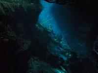 最も透明度の高い水セノーテの画像009
