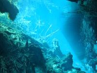 最も透明度の高い水セノーテの画像010