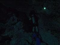 最も透明度の高い水セノーテの画像017