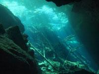 最も透明度の高い水セノーテの画像026