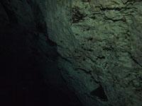最も透明度の高い水セノーテの画像032