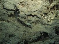 最も透明度の高い水セノーテの画像033