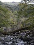 三嶺の山の画像003