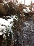 奈良井宿の凍った水路の画像001