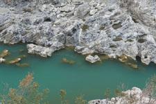 川の画像005