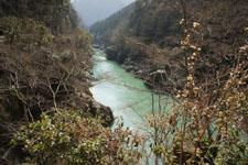 川の画像011