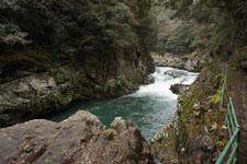 川の画像019