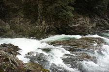 川の画像021
