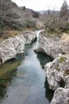川の画像022
