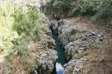 川の画像029