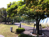 公園の画像002