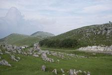 四国カルストの草原の画像003