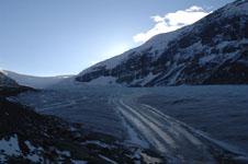 ロッキーのコロンビア大氷原の画像031