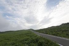 四国カルストの草原の画像001