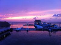 ユカタン半島のカンクンの海の画像003