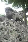 狛犬の画像001
