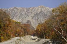 大山の紅葉の画像012
