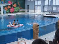 八景島シーパラダイスの水族館の画像004