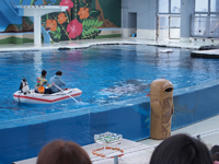 八景島シーパラダイスの水族館の画像005