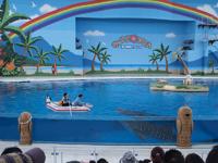 八景島シーパラダイスの水族館の画像008