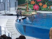 八景島シーパラダイスの水族館の画像012
