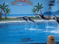 八景島シーパラダイスの水族館の画像016