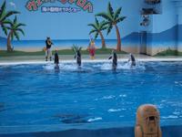 八景島シーパラダイスの水族館の画像017
