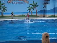 八景島シーパラダイスの水族館の画像018