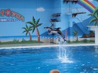 八景島シーパラダイスの水族館の画像019