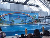 八景島シーパラダイスの水族館の画像020