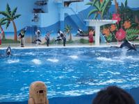 八景島シーパラダイスの水族館の画像022