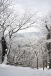 国見山の雪の画像004