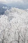 国見山の雪の画像006