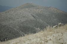 梶ヶ森の雪の画像001