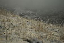 梶ヶ森の雪の画像003