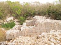 チチェン・イッツァ遺跡の画像050