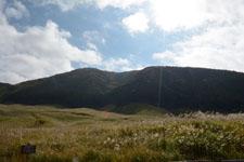 箱根仙石原のススキの画像001