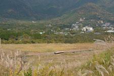 箱根仙石原のススキの画像016