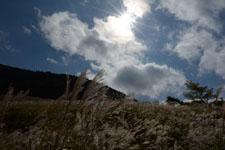 箱根仙石原の太陽の画像003