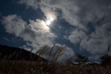 箱根仙石原の太陽の画像004