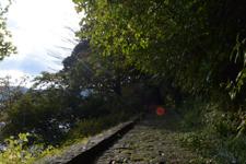 芦ノ湖の遊歩道