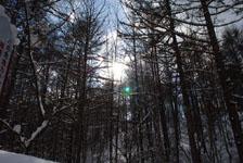 白川郷の雪の画像004