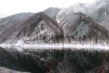 白川郷の川の画像007