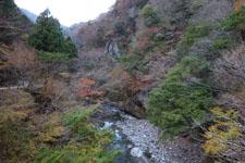 別府峡の渓流の画像001