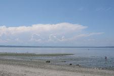 バラードの海の画像001