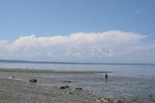 バラードの海の画像002