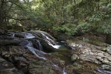 滑床渓谷の川の画像005