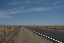 ヨセミテ国立公園のハクトウワシの画像005