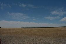 ヨセミテ国立公園の草原の画像003